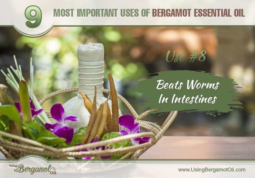 how to use bergamot essential oil